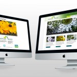 Vandusen_Website_beforeAfter